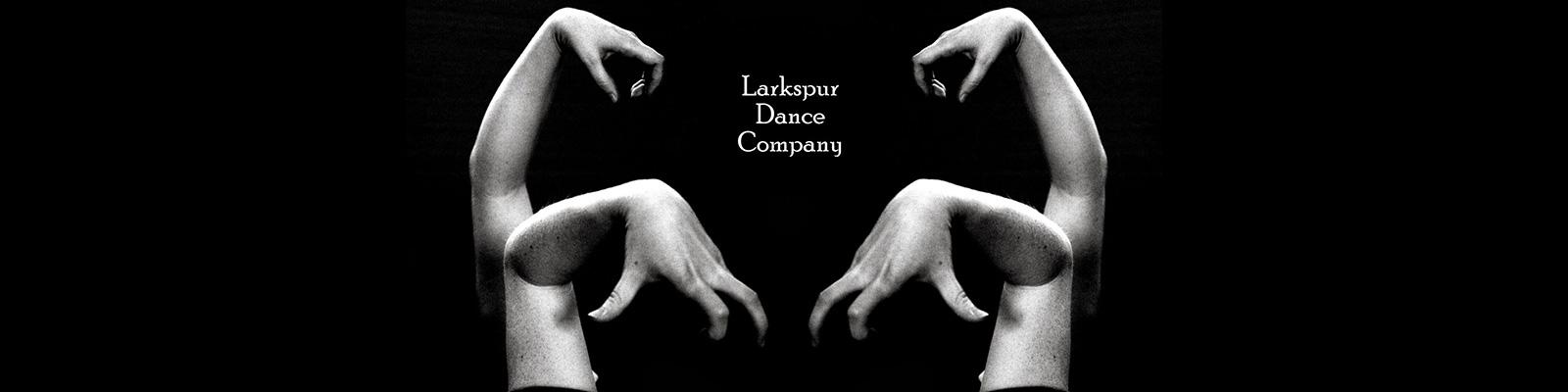 Larkspur Dance Company Logo